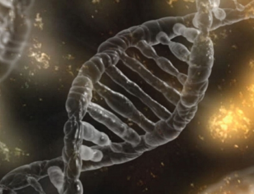 The Dark Side of DNA Testing